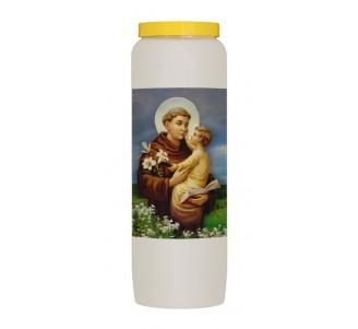 Heilige Antonius van Padua
