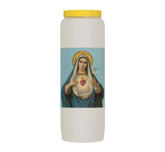 Heilig Hart van Maria